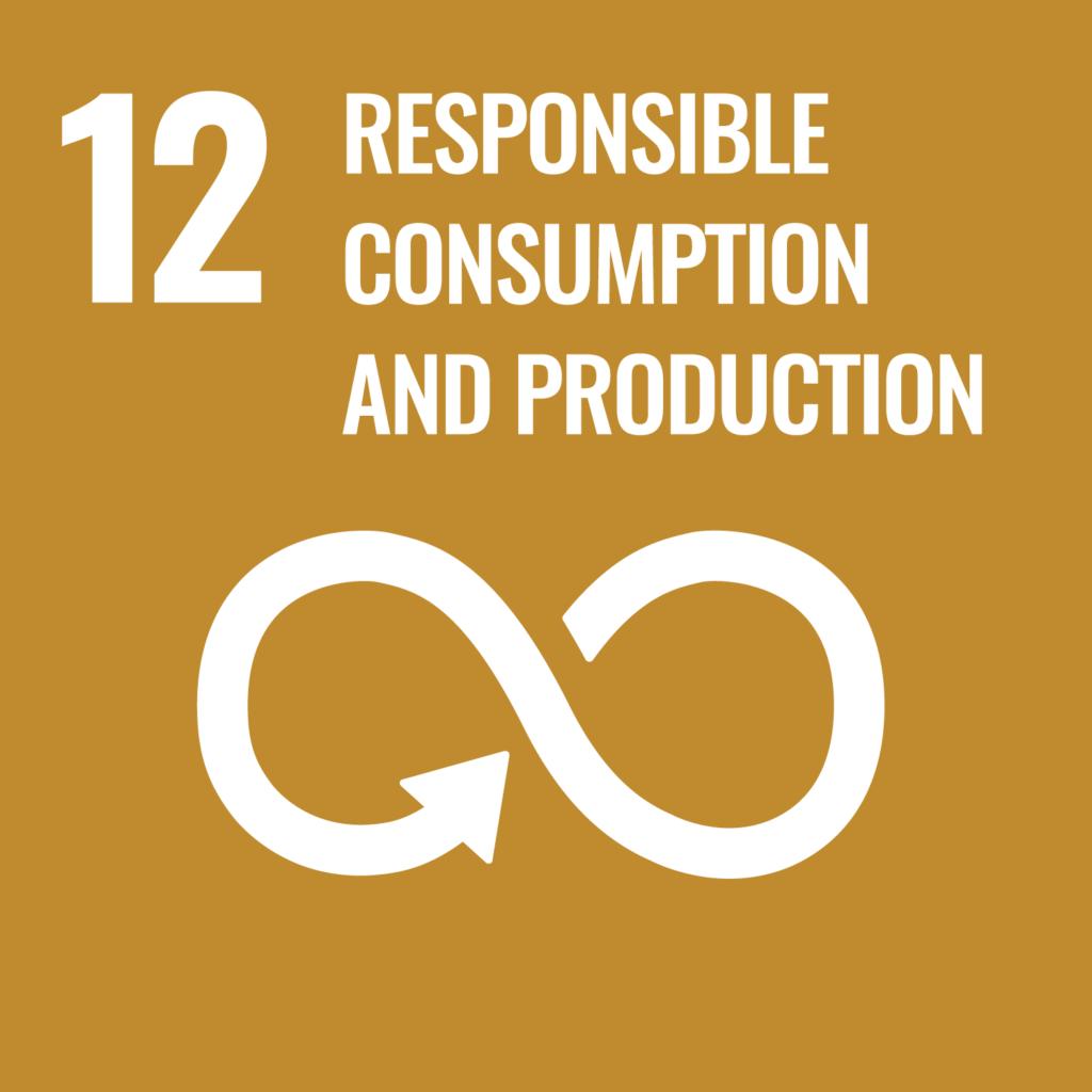 SDG Goal 12